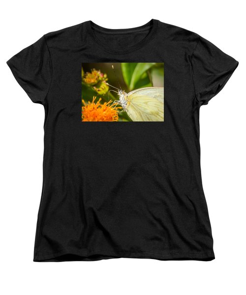 Butterfly Attracted To Mexican Flame Women's T-Shirt (Standard Cut) by Debra Martz