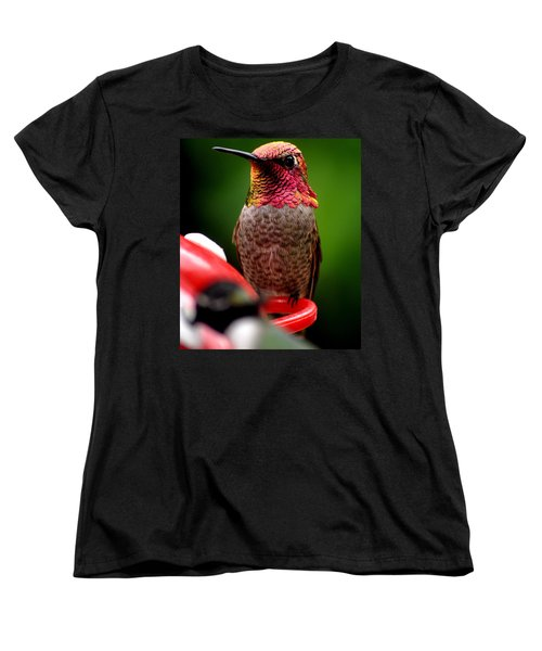 Women's T-Shirt (Standard Cut) featuring the photograph Colorful Male Anna Hummingbird On Perch by Jay Milo
