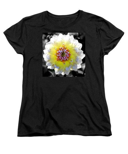 Colorwheel Women's T-Shirt (Standard Cut)