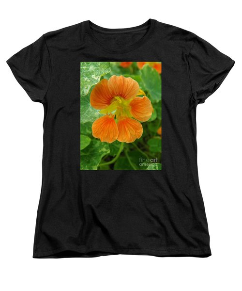 Common Nasturtium Women's T-Shirt (Standard Cut) by Sara  Raber
