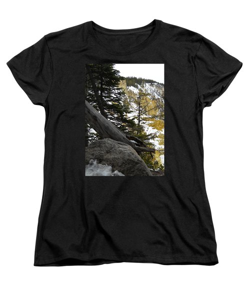 Women's T-Shirt (Standard Cut) featuring the photograph Composition At Lower Falls by Michele Myers