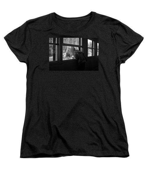 Women's T-Shirt (Standard Cut) featuring the photograph Curious by Jeremy Rhoades