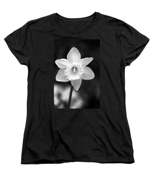 Daffodils - Infrared 10 Women's T-Shirt (Standard Cut) by Pamela Critchlow
