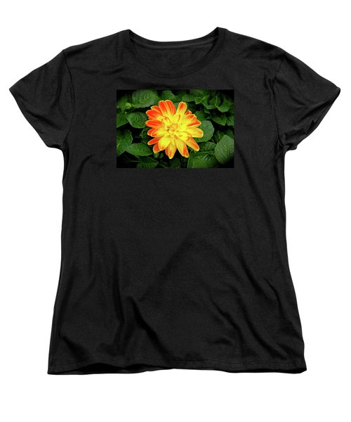 Dahlia Women's T-Shirt (Standard Cut) by Ed  Riche