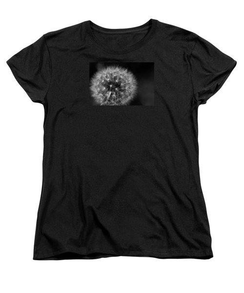 Dandelion Fluff Women's T-Shirt (Standard Cut) by Rebecca Davis