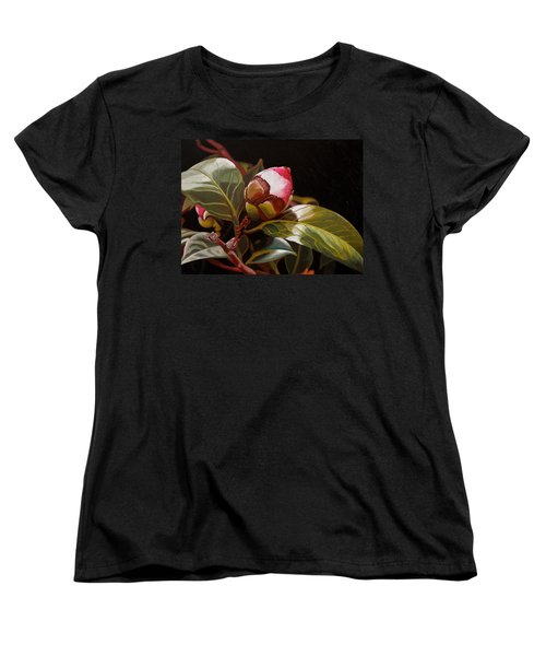 December Rose Women's T-Shirt (Standard Cut) by Thu Nguyen
