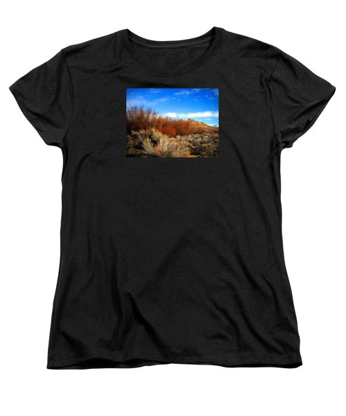 Women's T-Shirt (Standard Cut) featuring the photograph Desert Colors by Marilyn Diaz