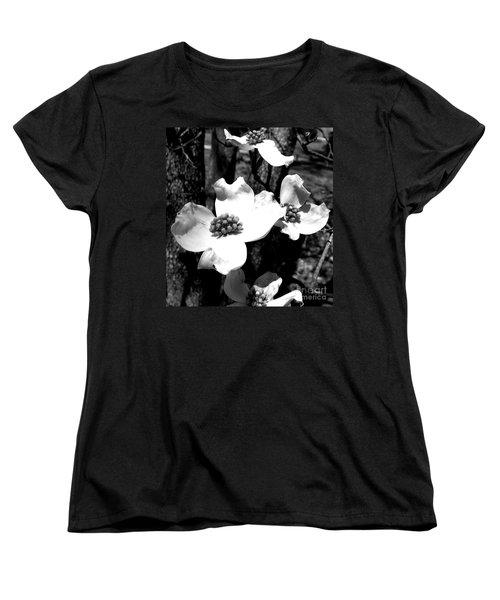 Dogwood 3 Women's T-Shirt (Standard Cut) by Andrea Anderegg