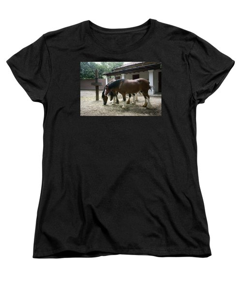 Women's T-Shirt (Standard Cut) featuring the photograph Draft Horses by Lynn Palmer