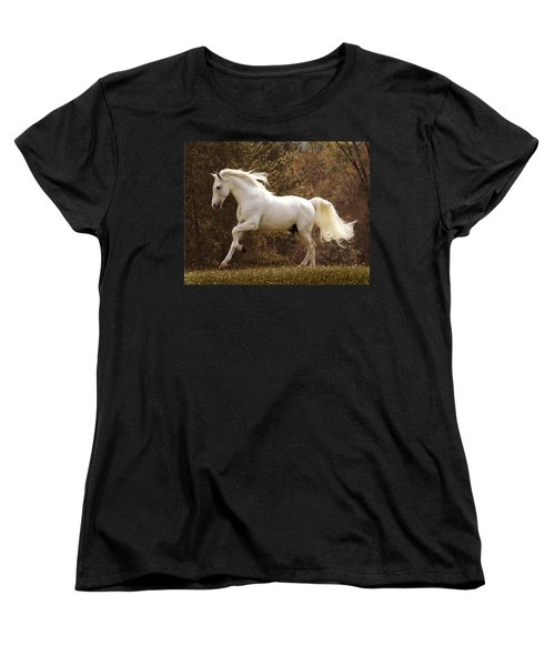 Dream Horse Women's T-Shirt (Standard Cut) by Melinda Hughes-Berland