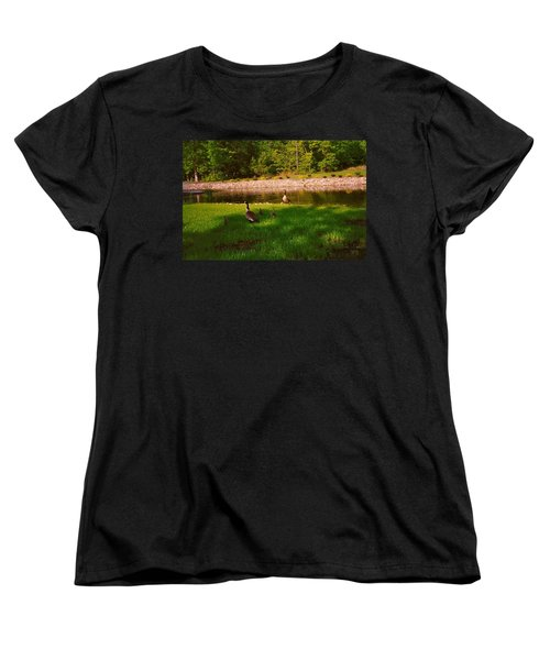 Duck Family Getting Back From Pond Women's T-Shirt (Standard Cut) by Amazing Photographs AKA Christian Wilson