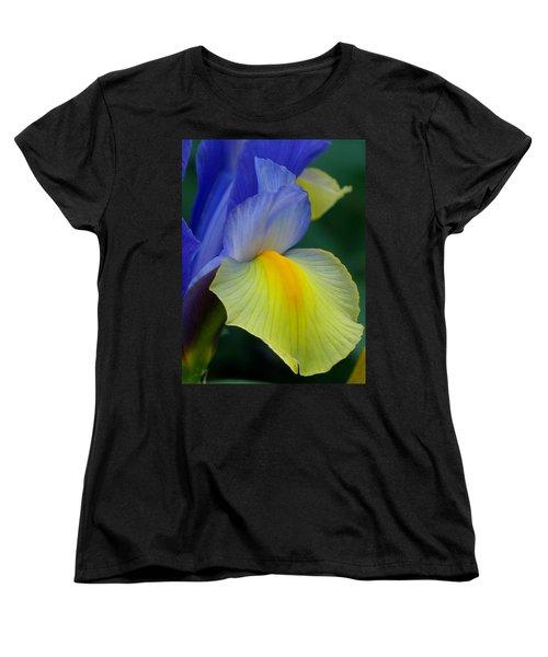 Dutch Beauty Women's T-Shirt (Standard Cut) by Jennifer Wheatley Wolf
