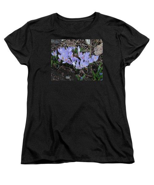 Early Crocuses Women's T-Shirt (Standard Cut) by Donald S Hall