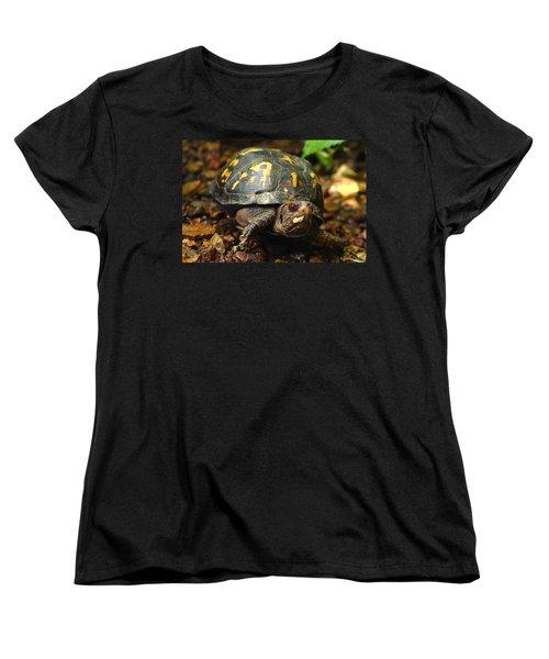 Eastern Box Turtle Women's T-Shirt (Standard Cut) by Michael Eingle