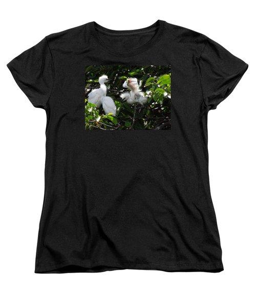 Egret Chicks Women's T-Shirt (Standard Cut) by Ron Davidson