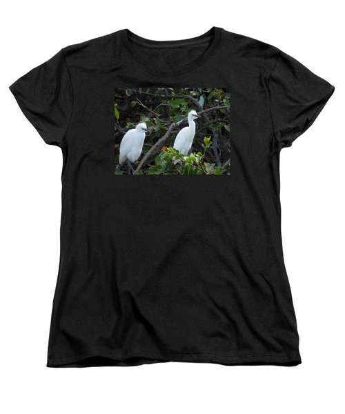 Egret Chicks Waiting To Be Fed Women's T-Shirt (Standard Cut) by Ron Davidson