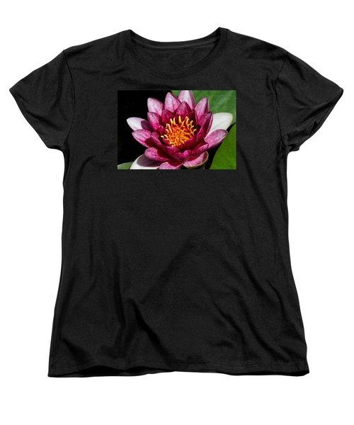 Elegant Lotus Water Lily Women's T-Shirt (Standard Cut) by Denyse Duhaime