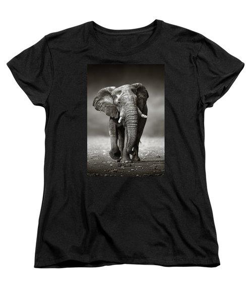 Elephant Approach From The Front Women's T-Shirt (Standard Cut) by Johan Swanepoel