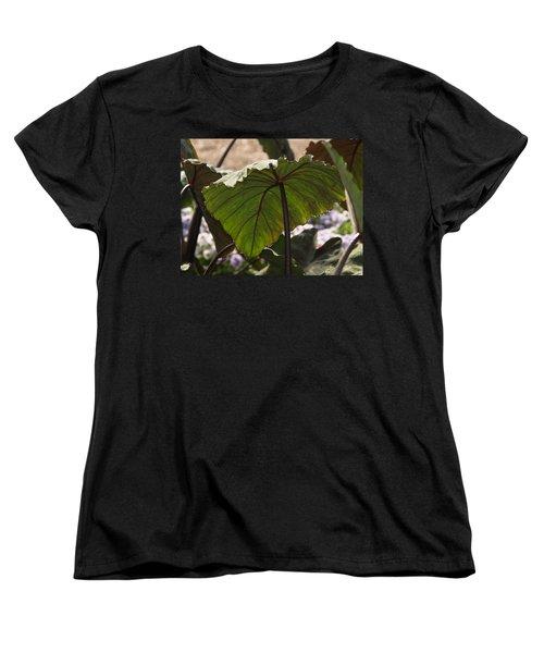 Elephant Ear Women's T-Shirt (Standard Cut)