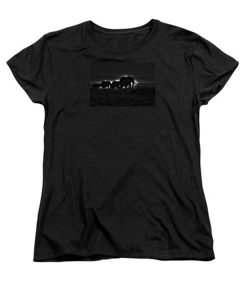 Elephant Family Women's T-Shirt (Standard Cut) by Aidan Moran