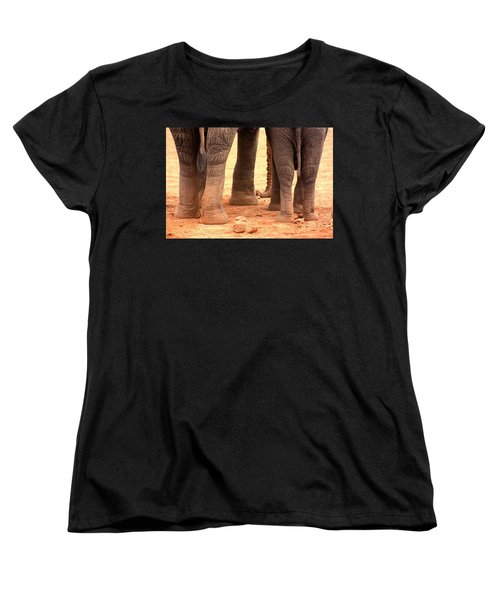 Women's T-Shirt (Standard Cut) featuring the photograph Elephant Family by Amanda Stadther