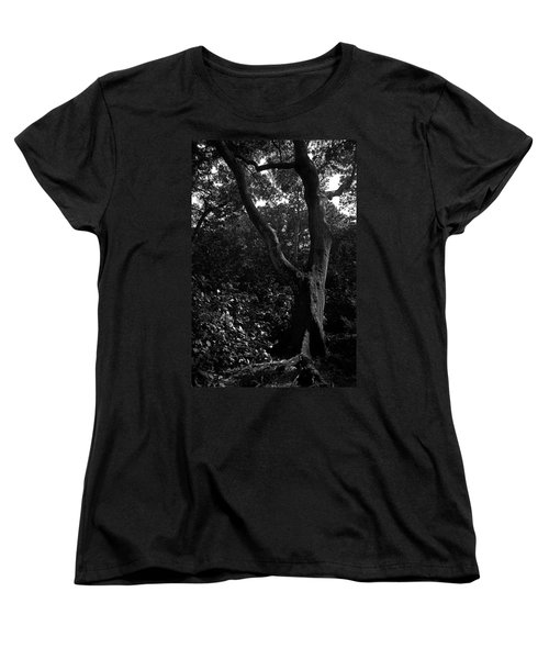 Women's T-Shirt (Standard Cut) featuring the photograph Elizabethan Gardens Tree In B And W by Greg Reed