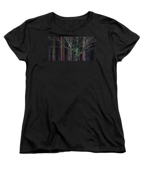 Women's T-Shirt (Standard Cut) featuring the photograph Enchanted Forest by Davorin Mance