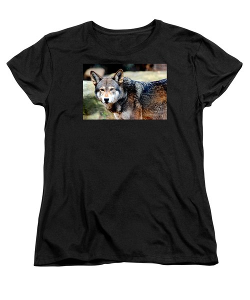 Endangered Red Wolf Women's T-Shirt (Standard Cut) by Kathy  White