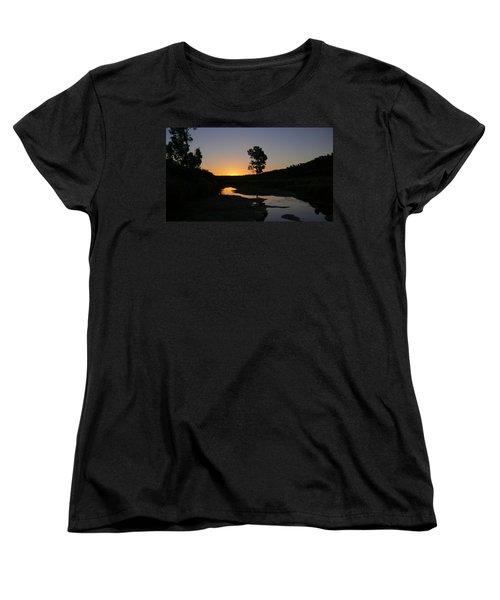 Evening Wonderland Women's T-Shirt (Standard Cut) by Evelyn Tambour