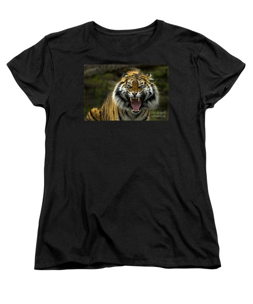 Eyes Of The Tiger Women's T-Shirt (Standard Cut) by Mike  Dawson