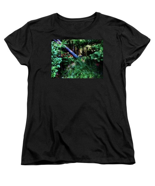 Women's T-Shirt (Standard Cut) featuring the photograph Fairy Forest by Jamie Lynn