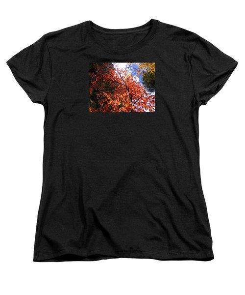 Fall Colors 6340 Women's T-Shirt (Standard Cut) by En-Chuen Soo