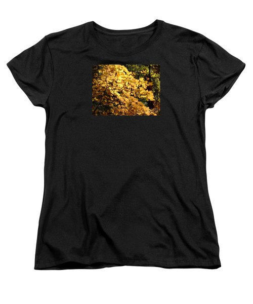 Fall Colors 6407 Women's T-Shirt (Standard Cut) by En-Chuen Soo