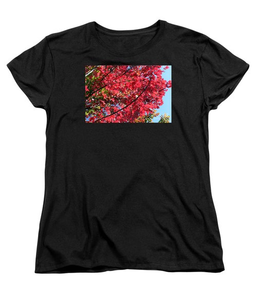 Women's T-Shirt (Standard Cut) featuring the photograph Fall In Illinois by Debbie Hart