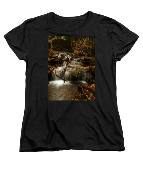 Fall With Grace Women's T-Shirt (Standard Cut) by Jeremy Rhoades