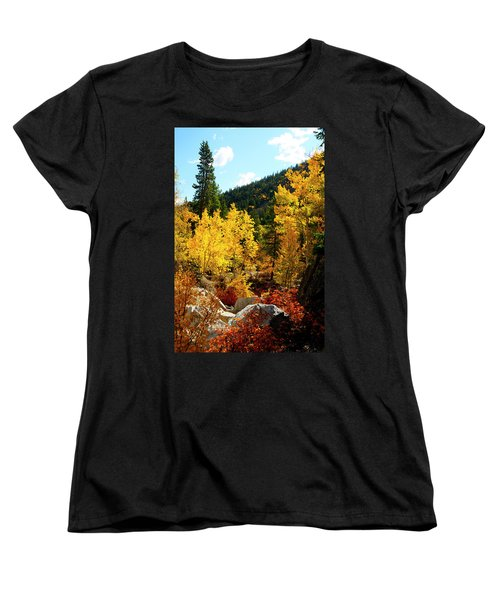 Fall2 Women's T-Shirt (Standard Cut) by Jeremy Rhoades
