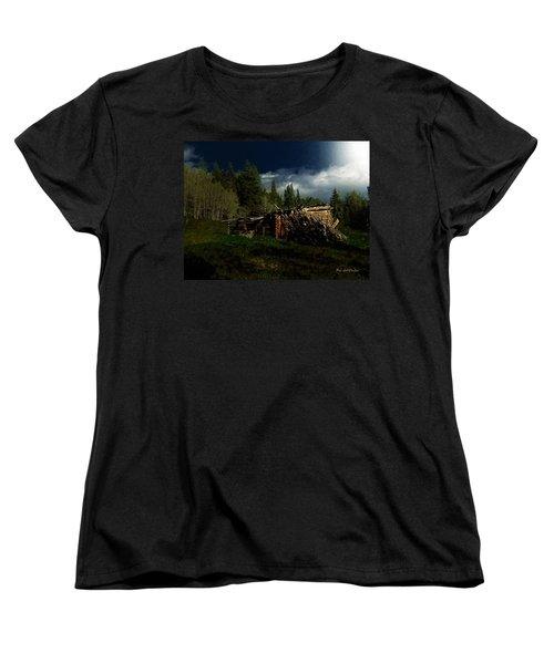 Fallen In Women's T-Shirt (Standard Cut) by RC DeWinter