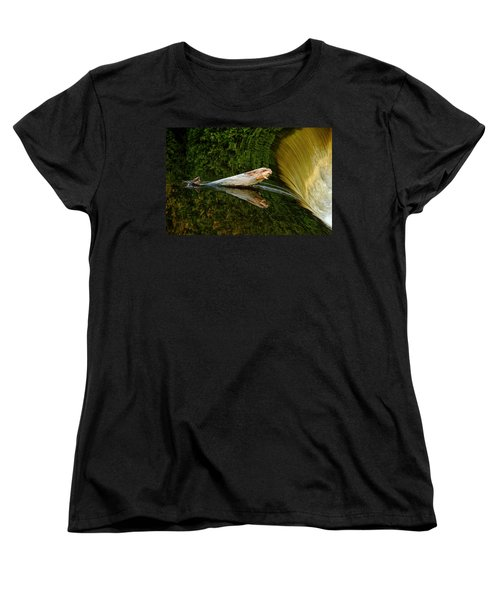 Women's T-Shirt (Standard Cut) featuring the photograph Falling Tree Reflections by Debbie Oppermann