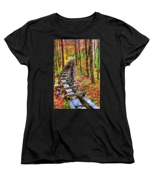 Feed The Wheel Women's T-Shirt (Standard Cut) by Dan Stone