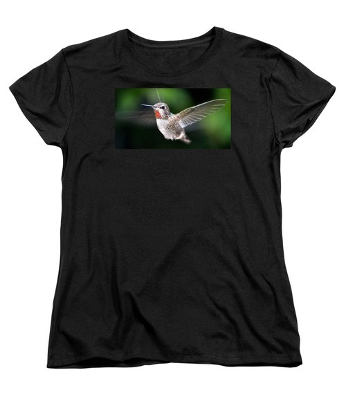 Women's T-Shirt (Standard Cut) featuring the photograph Female Caliope Hummingbird In Flight by Jay Milo