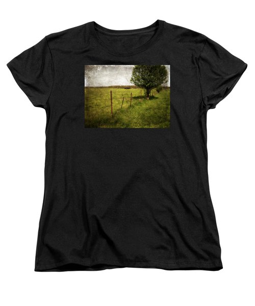 Fence With Tree Women's T-Shirt (Standard Cut)