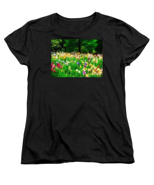 Field Of Iris Women's T-Shirt (Standard Cut)