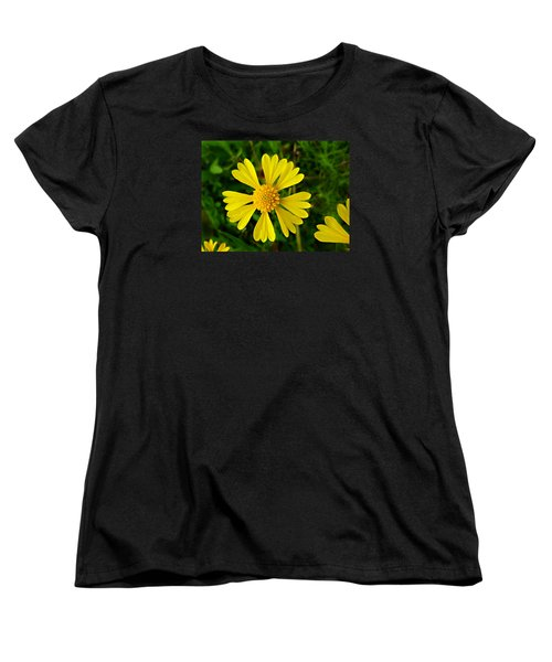 Women's T-Shirt (Standard Cut) featuring the photograph Wild Fine Leaved Sneezeweed by William Tanneberger