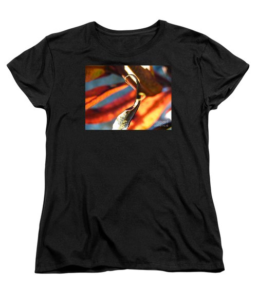 Fireweed Number 4 Women's T-Shirt (Standard Cut) by Brian Boyle