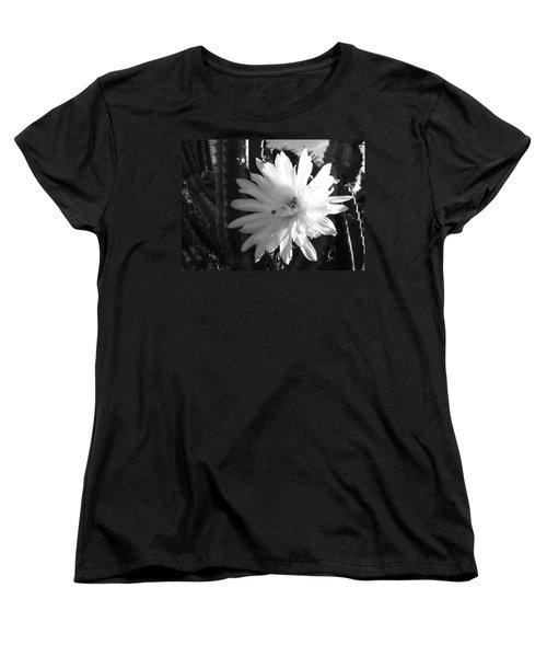 Flowering Cactus 1 Bw Women's T-Shirt (Standard Cut) by Mariusz Kula