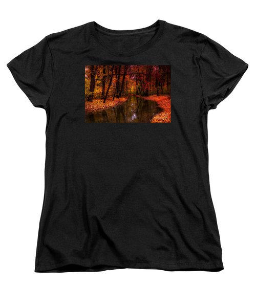 Flowing Through The Colors Of Fall Women's T-Shirt (Standard Cut) by Hannes Cmarits