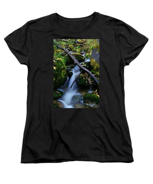 Women's T-Shirt (Standard Cut) featuring the photograph Follow Me by Jeremy Rhoades