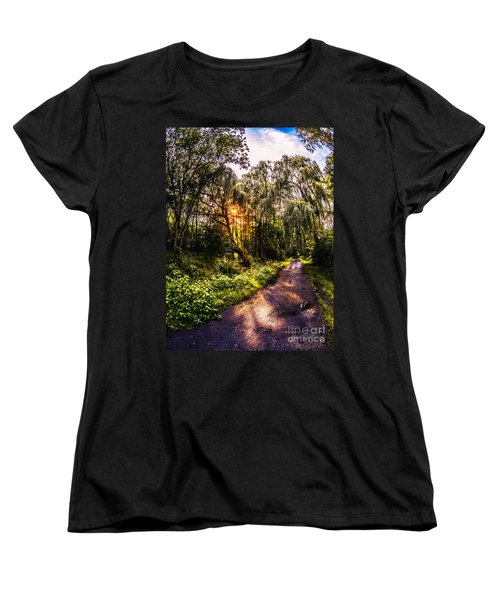 Forest Track Women's T-Shirt (Standard Cut) by Daniel Heine