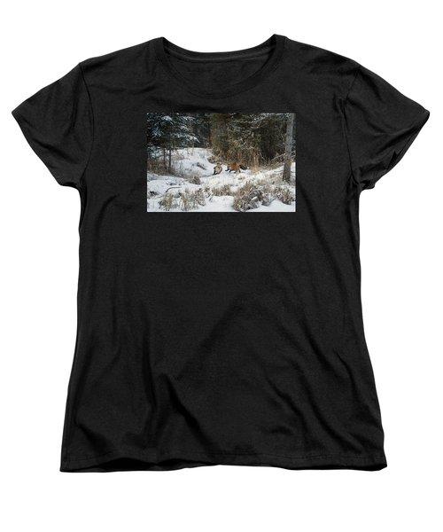 Fox Hollow Women's T-Shirt (Standard Cut) by Jack Bell