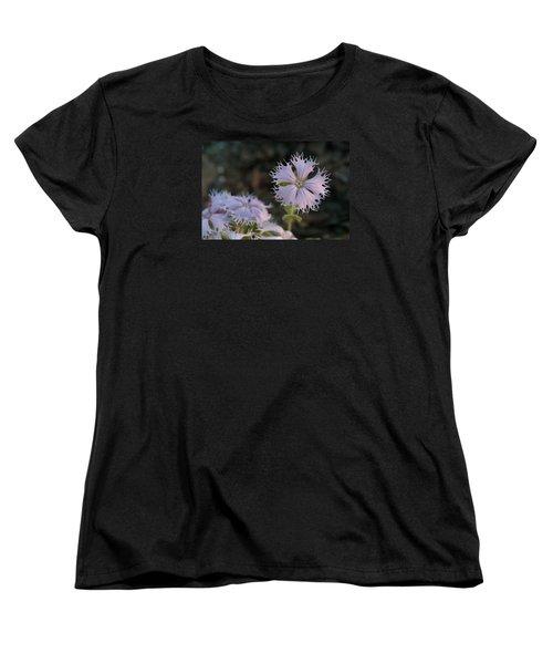 Women's T-Shirt (Standard Cut) featuring the photograph Fringed Catchfly by Paul Rebmann